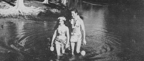 Strings over Tahiti Album Art