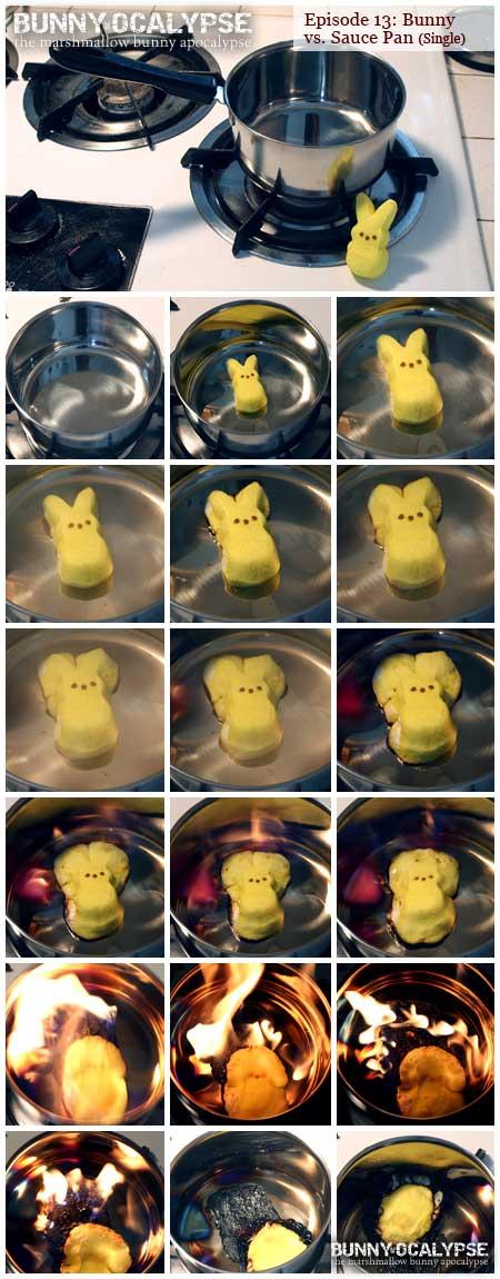bunny vs saucepan 1