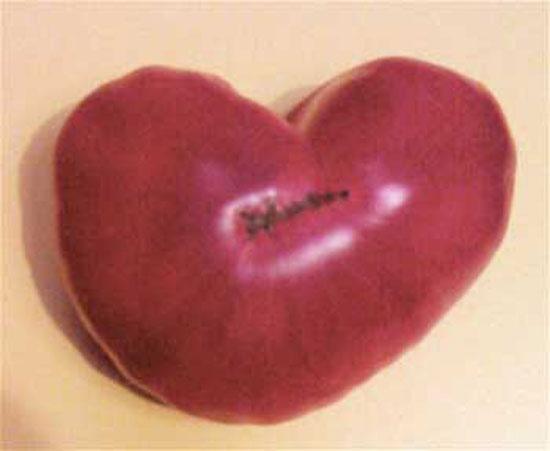 heart_of_tomato.jpg