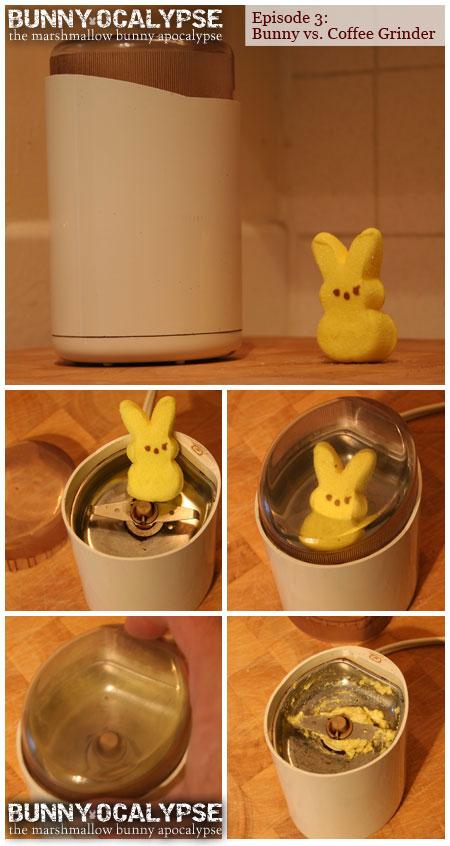 bunny vs grinder