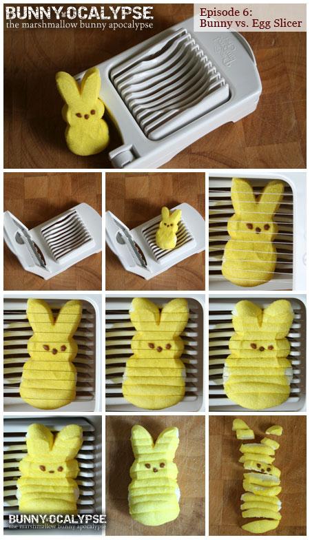 bunny vs eggslicer