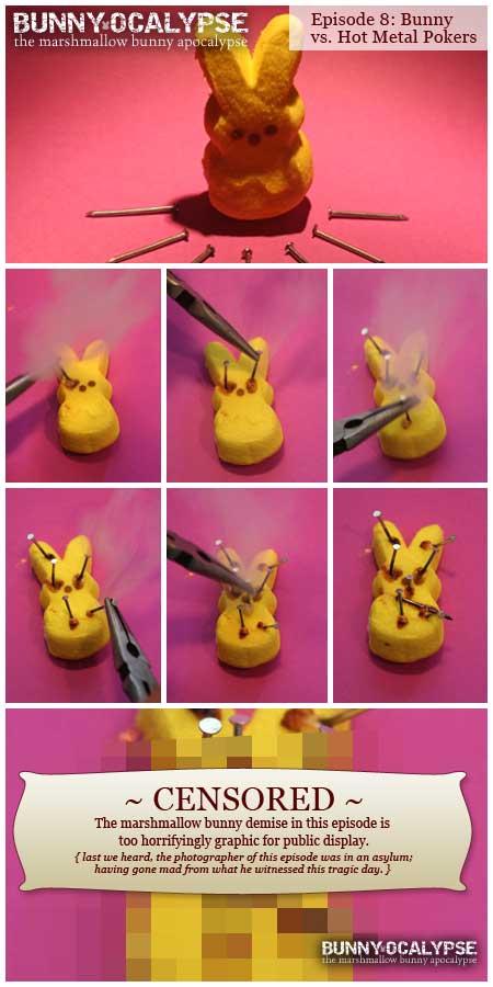 bunny vs hot metal pokers