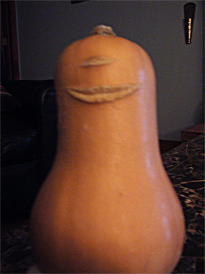 A butternut squash with breaks in its skin that give it the appearance of having a single eye and a mouth.