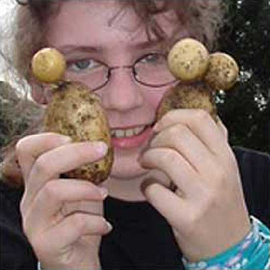 Alien Potatoes