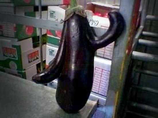 Dancing Eggplant