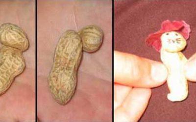 El Nombre Peanut