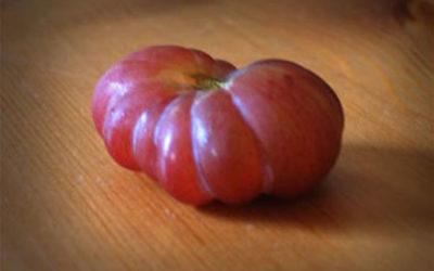 New Definition of Grape Tomato