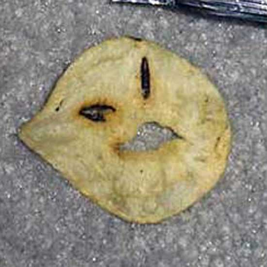No more Mr. Nice Chip!