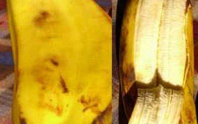Banana Unsplit