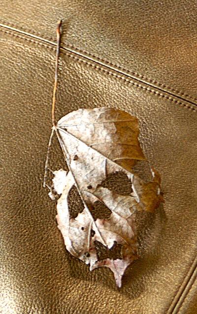 Skull Leaf