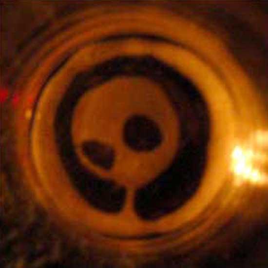 alien-beer.jpg