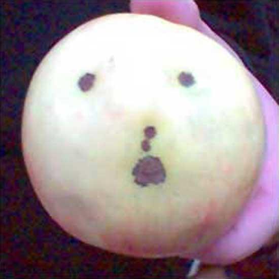 frowningapple-agata.jpg