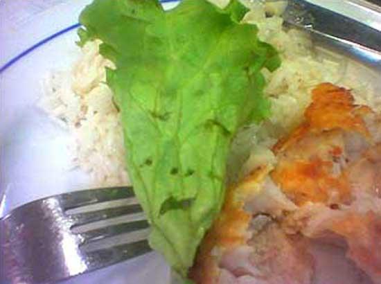 lettuceface_edgar.jpg